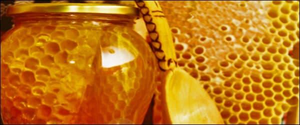 хранение сотового меда