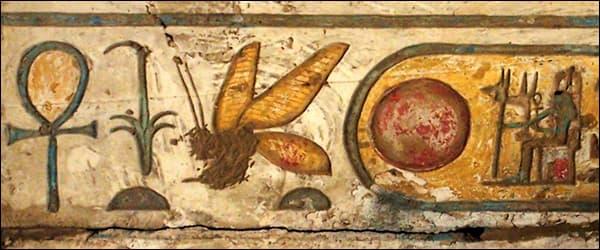 история пчеловодства в наскальных фресках