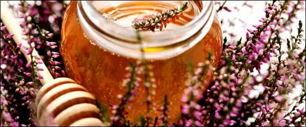 мед с вереска