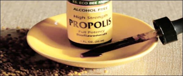 лечебные свойства прополиса