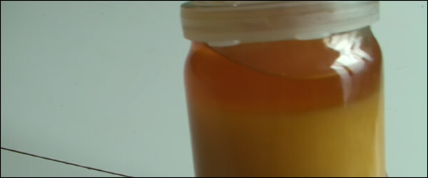 Незрелый мед