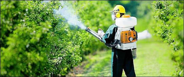 обработка садов пестицидами