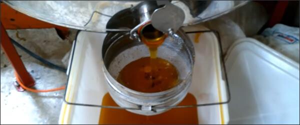 Процесс откачки меда