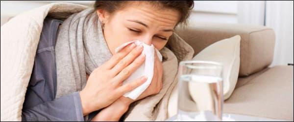 Как принимать забрус при лечении