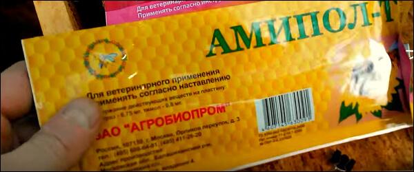 Амипол
