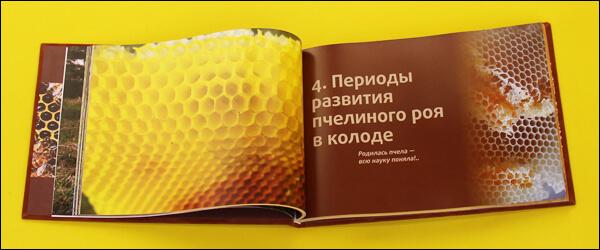 Книга колодное пчеловодство